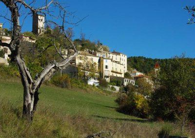 village arbre bassine 800x600
